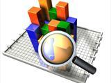 Анализ сайта в Интернет (Премиум пакет)