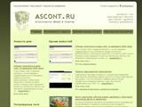 Открытие новостной ленты на сайте Ascont.ru